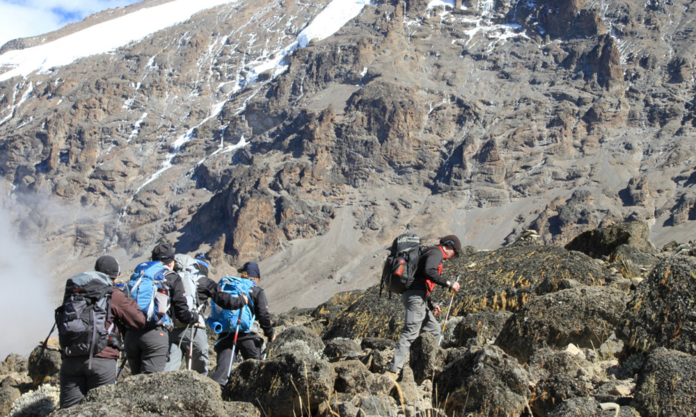 Trekking above Karanga camp to Barafu on the Machame Route